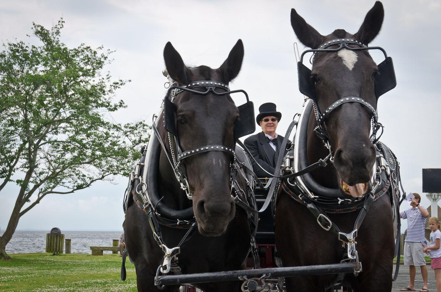Horse-drawn carriage awaits the Governor
