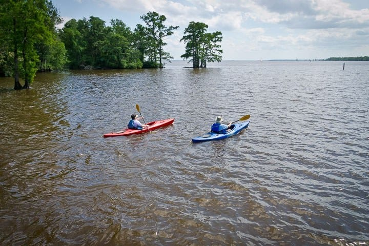 Kayaking on Edenton Bay