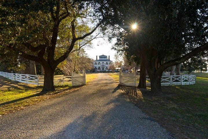 Hayes Plantation, Edenton, North Carolina (Photo by Kip Shaw)